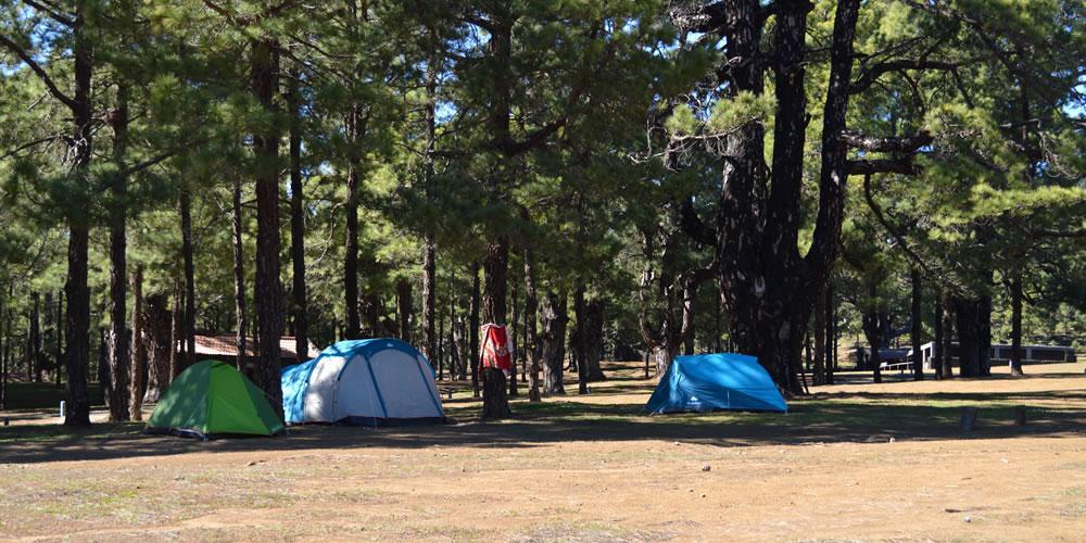 Zelte auf dem Camping- und Picknick Platz Hoya del Morcillo auf El Hierro