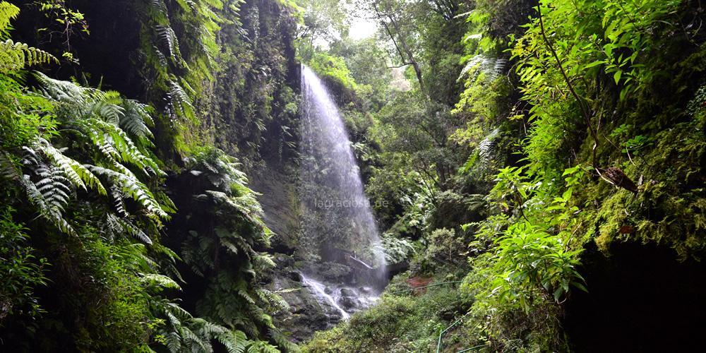 Wasserfall bei Los Tilos auf La Palma.