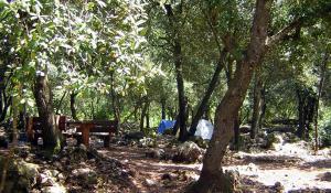 Nahe dem Kloster Llluc im Norden Mallorcas gibt es zwei Rast- und Campingplätze